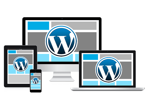 paginas web en wordpress Barcelona