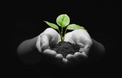 paginas web para startups nuevas empresas eduweb